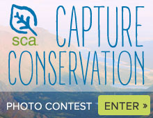 Join SCA's Capture Conservation nature photo contest and win prizes