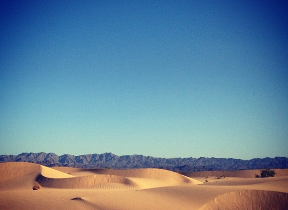 Endless, beautiful dunes.