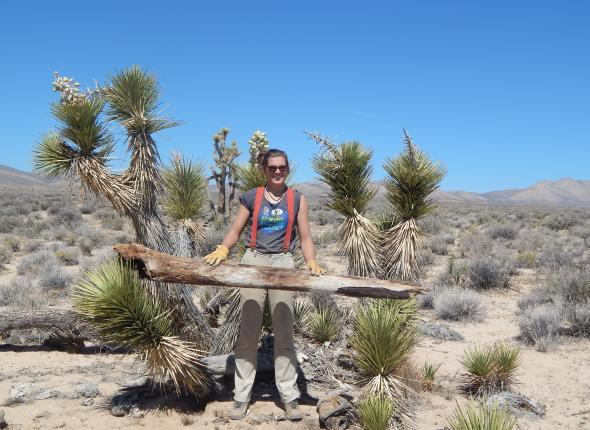 Rachel poses in a stand of Joshua trees.