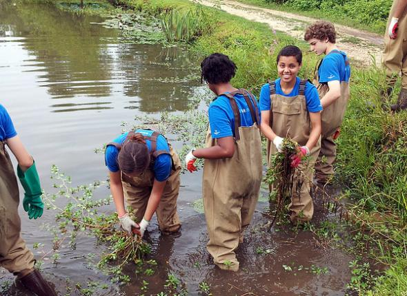 DC Community Programs Working in The Aquatic Gardens