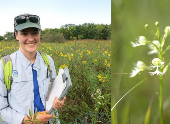 Left: SCA intern and biology masters student Claire Ellwanger prepares for a field survey. Right: An eastern prairie fringed orchid (Platanthera leucophaea).