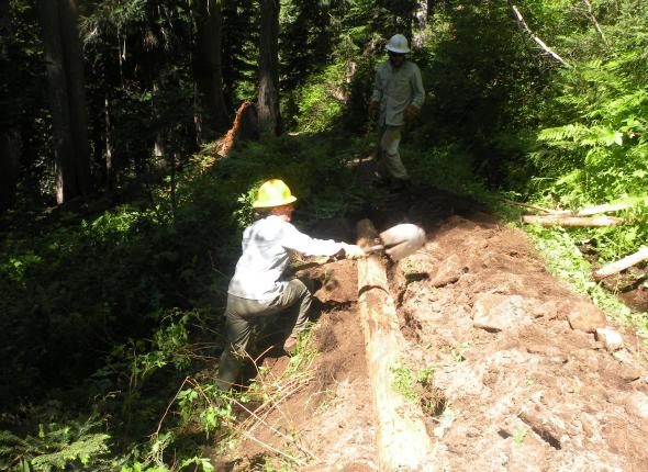 second log and fill