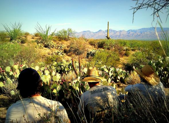 "Taking a break in the ""shade"" at Cactus Forest, Saguaro"
