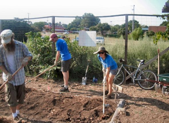 DURING Oxford Community Garden: Mike, Brendan and Sophie