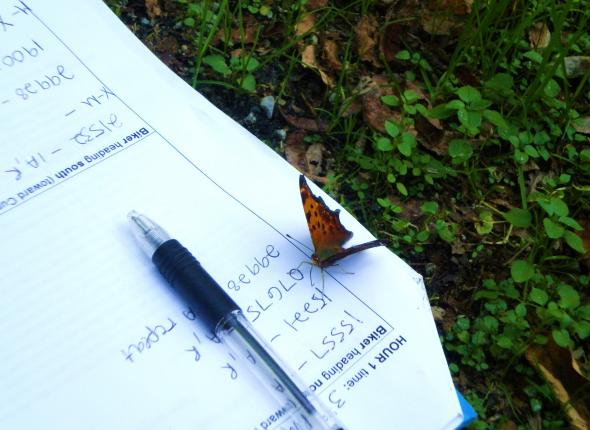 trail count tally sheet - greeted by a butterfly