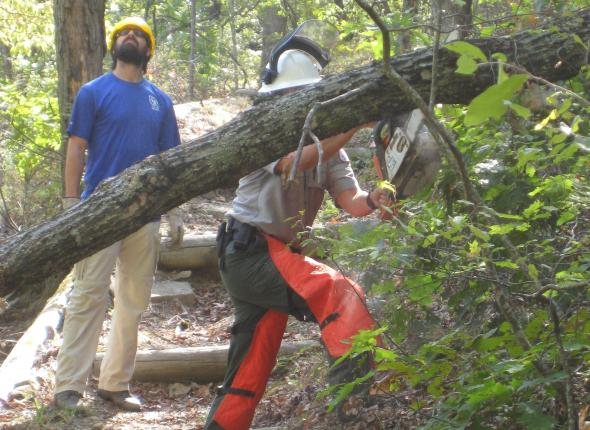 Josh watching out for deadfall as a ranger clears the trail.