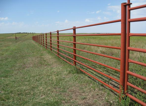 A beautifully painted steel fence, after.