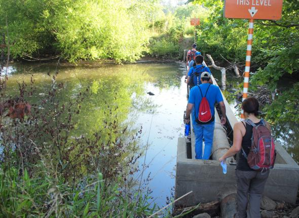 The team crosses a pipe bridge to search for canebrake