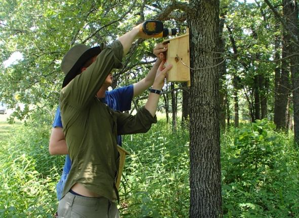 Ben installing Blue Jay boxes.