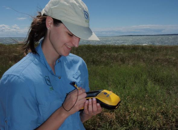 Katie hard at work surveying in Elizabeth M Morton NWR in NY.