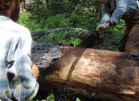 X-cut that log Phil and James!