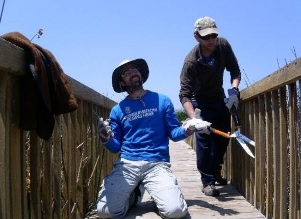 Josh and Alex working at Waco wetlands