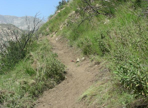 Stone Canyon: trail segment after