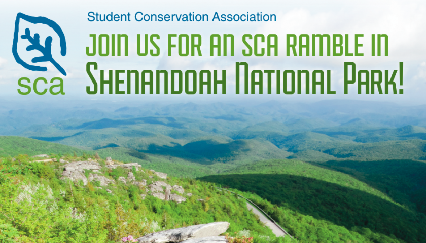 how to join the sca