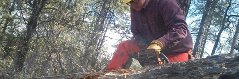 SCA Phoenix Field School Member earning Chainsaw Certification