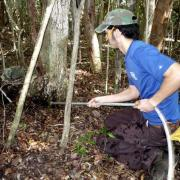 Chris Burgess, a volunteer with the Student Conservation Association, uses a high-pressure hose to clear a space beneath a North Key Largo tree in a pilot program to create potential nesting areas for endangered Key Largo woodrats. Photo by Kevin Wadlow