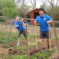 Nashville Food Project: Mike and Eva use broad forks to clear a garden bed.