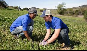 Jeremy Taitano with one of his SCA Crewmembers working on native species protection